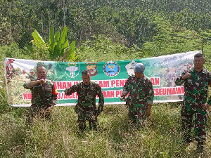 Kodim 0103/Aceh Utara Manfaatkan Lahan Eks Tanaman Ganja Seluas 22 Hektare
