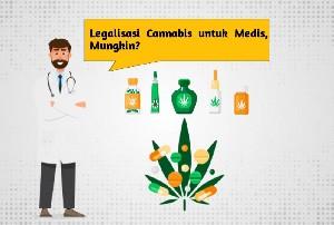 Menakar Peluang Terbitnya UU Legalisasi Cannabis untuk Medis, Mungkinkah?