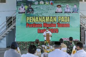 Pemerintah Aceh Perkuat Ketahanan Pangan di Masa Pandemi Covid-19
