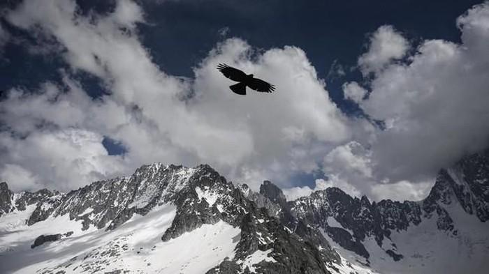 Kecelakaan Pesawat di Pegunungan Alpen Swiss, 4 Orang Tewas