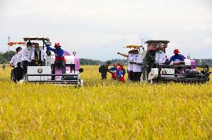 Mentan Dukungan Penuh Pengembangan Ekonomi Petani di Aceh