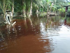 Kabupaten Aceh Singkil Dikepung Banjir