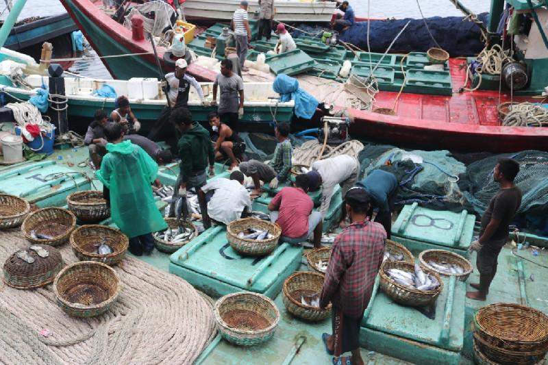 Pontang-panting Nelayan di Tengah Pandemi