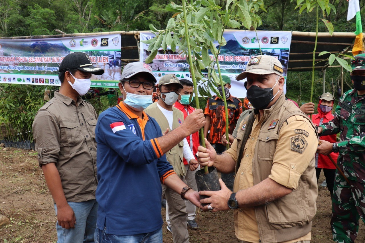 Penghijauan di Lokasi Banjir Bandang Paya Tumpi