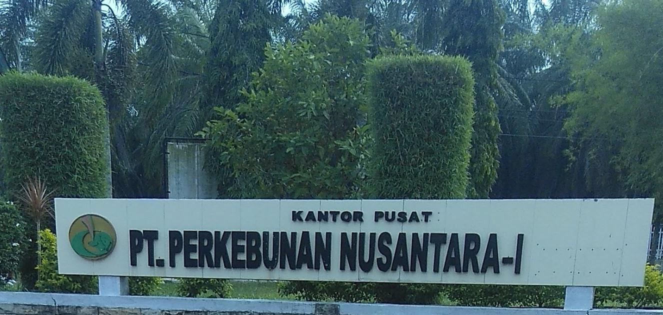 Diduga Dirut PTPN 1 Jadikan Karyawan sebagai Pembantu Pribadi di Medan, Keluarga Minta Dipulangkan ke Langsa