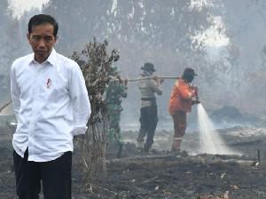 Jokowi: Pulau Sumatra Berpotensi Karhutla Februari Ini