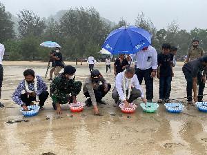 PLN UIW Aceh Lepas Ratusan Tukik ke Pantai Lhoknga