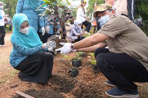 Dyah Erti Hijaukan Lingkungan Kantor UPTD BPSR di Blang Bintang