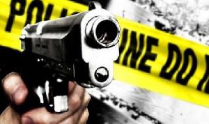 4 Orang Tewas dalam Penembakan di California