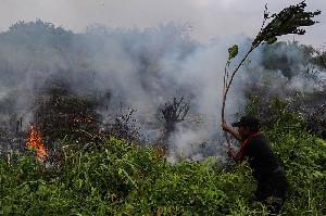 TNI Amankan Pelaku Pembakar Lahan di Aceh Tenggara