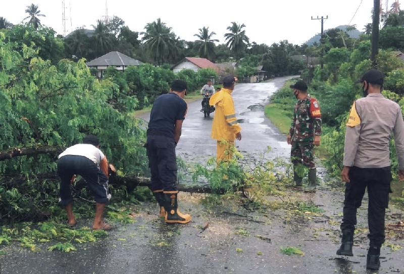 Bersihkan Pohon Tumbang, TNI-Polri Gotong Royong Bersama Warga