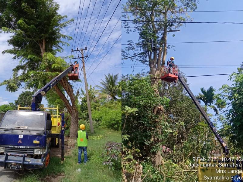 Gangguan Listrik PLN Aceh Disebabkan Dominasi Gangguan Pohon