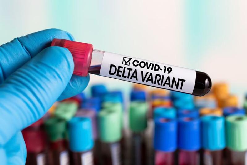 Varian Corona Delta Lebih Menular Dari Alpha