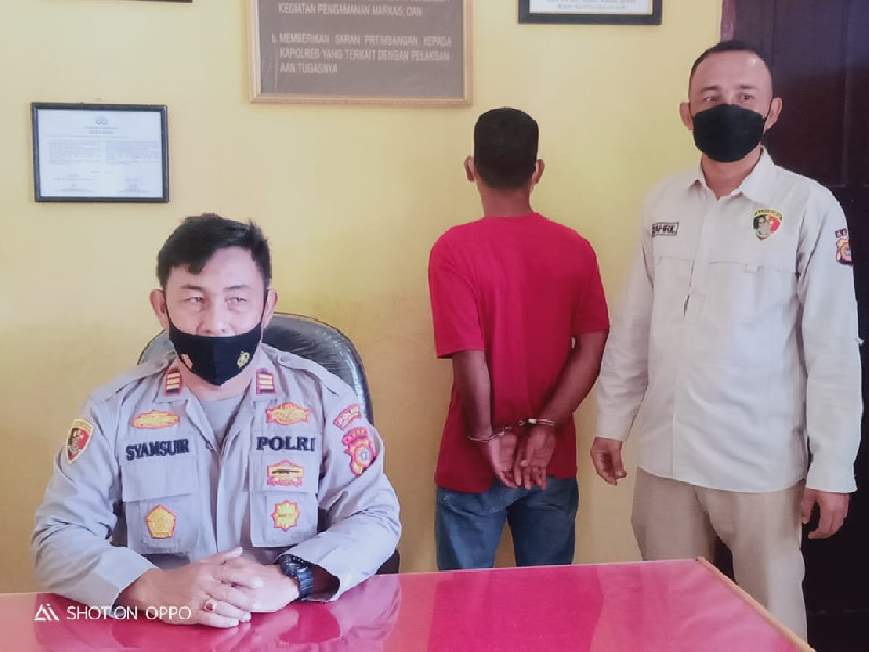 Dalih Beli Bulu Pancing, Seorang Pria Melakukan Pelecehan Seksual Anak Dibawah Umur di Abdya Diciduk Polisi