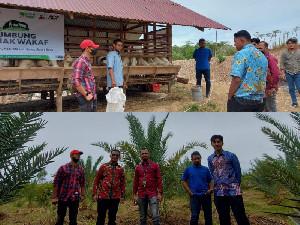 Bantu Umat, ACT Miliki Kebun Kurma dan Lumbung Ternak di Aceh Besar