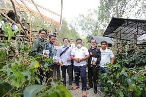 Aminullah: Tanah Gayo Jadi Primadona Ekonomi