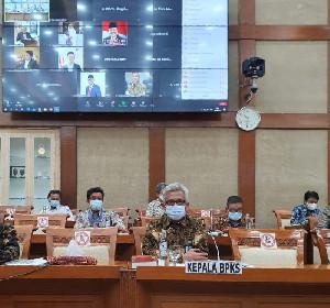 Bahas Program Rencana Kerja Anggaran Tahun 2022, Kepala BPKS Hadiri RDP Dengan Komisi VI DPR RI.