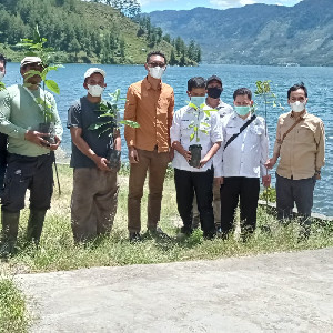 Forum DAS Aceh Bantu Bibit Alpukat dan Durian