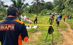 Polres Aceh Timur Bentuk Tim Khusus Untuk Ungkap Kematian Gajah Tanpa Kepala