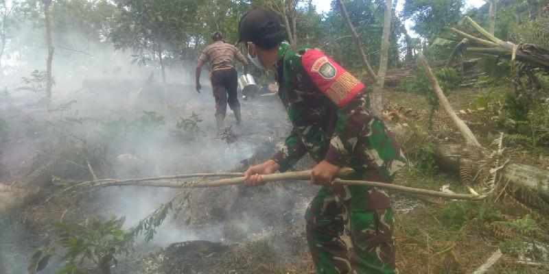 11 Hektar Lahan Terbakar di Aceh Tengah
