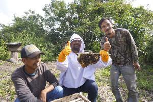 Hendra Budian Berkunjung ke Lokasi Budidaya Lebah Madu di Desa Fajar Harapan
