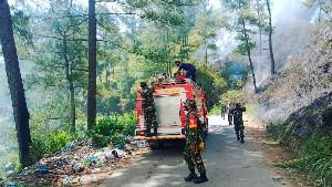 8 Hektar Hutan Pinus di Aceh Terbakar