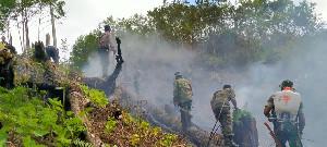 Kebakaran  di Aceh Tengah Kembali Terjadi, 11 Hektar Lahan Hangus