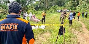 Polisi Berhasil Ungkap Kasus Kematian Gajah Tanpa Kepala di Aceh Timur