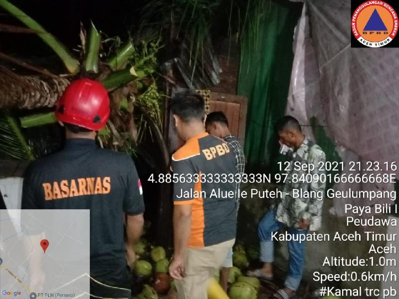 Satu Rumah Tertimpa Pohon di Kecamatan Peudawa, Satu Orang Luka Ringan
