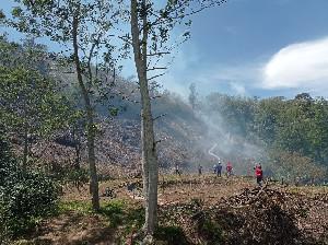 Lahan Seluas 7 Hektare di Bireuen Terbakar