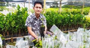 Biar Tidak Punah, Pemerintah Sarankan Hidupkan Petani Muda